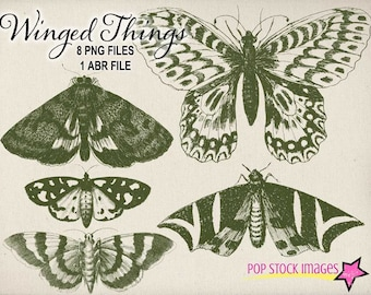 Vintage Winged Things - Moths - Butterflies - Dragonflies - Photoshop Brushes - 8 PNG Files and ABR File - Stamps - Overlays - Elements