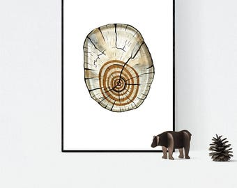 Tree Rings Watercolour Print, Woodland Painting, Nature Illustration, A3 Giclee Log Slice