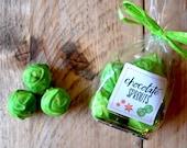 Chocolate Sprouts stocking filler - novelty secret Santa gift - handmade chocolate