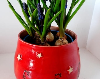 Cheery Red Pot with black detailing