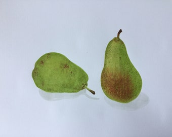 Watercolor, botanical Illustration, pear, Pear watercolor print