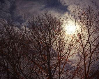 Supermoon Photo, Full Moon Picture, Moon Photo, Supermoon Print, Moon Print, Full Moon Photo, Fall Picture, Full Moon Print, Supermoon