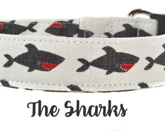 Gray and Red Shark Dog Collar - The Sharks