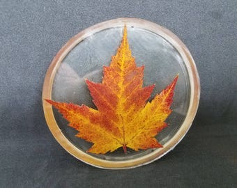 Maple Leaf Coaster 05