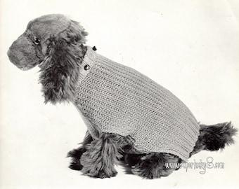 Vintage dog sweater knitting pattern in PDF instant download version , PDF downloadable