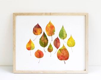 Autumn Colorful Leaves / Botanical illustration / Digital Art Print / Wall Art / Instant Download Print