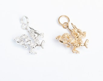 Dragon - dragon pendant - dragon charm - 90s - gold charm - silver necklace - sterling silver - year of the dragon - chinese zodiac A5PD1011