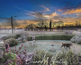 Frosty Morning In Brittany