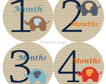 Month Baby Stickers Boy, Milestone Stickers, Month Stickers, Baby Month Stickers, Baby Stickers, Elephant  #103