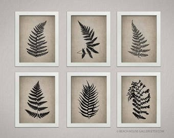 Ferns Botanical Prints, Taupe Living Room Art, Gardern Botanical Prints, Farmhouse Rustic Art,  Fern Garden Botanical,