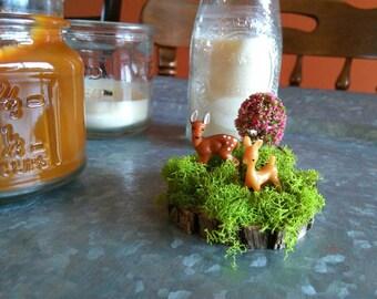 Miniature Deer Garden
