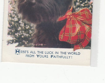 Great Britain Bamforth Postcard,Here's All The Luck In The World From Yours Faithfully Scotty Dog