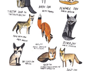 Foxes and Vixens Prints