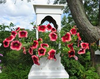 Unique PVC planter,planter for small plants, hanging feeder, suet feeder, Taj design,succulent planter,modern planter, lantern, Made in USA