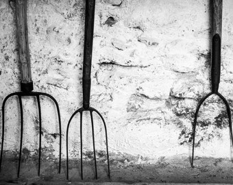 Old Ireland Print - Vintage Forks Black and White Photograph - Rustic Irish Tools - Rural Life - Country Pursuits
