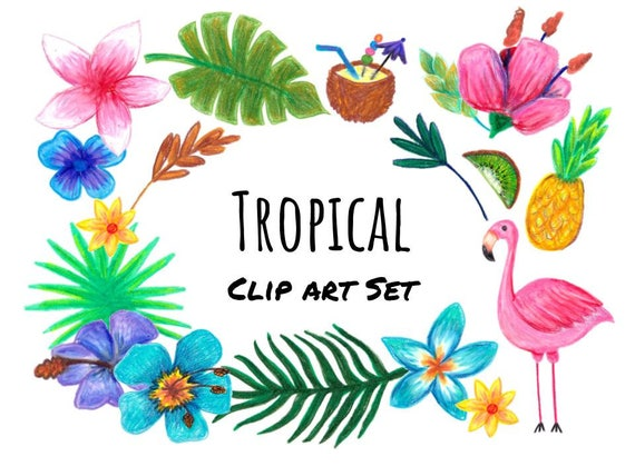 hand drawn tropical clip art hand drawn tropical clipart hand rh etsystudio com tropical clipart free tropical clipart black and white