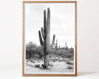 Desert Cactus Print, Large Cactus Wall Art, Mexican Wall Art, Black and White Photography, Arizona Poster, Aztec Decor, South Western Home