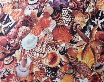 Beach Novelty Print Fabric - 5 Yards Seashells Photo Collage Cotton - Continuous Yardage - 60s 70s - Hoffman California Fabrics - 46681