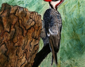 Pileated woodpecker art print: woodpecker wall art decor woodpecker bird art bird lover gift woodpecker painting