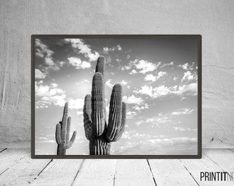 Cactus Photo Art, Cactus Decor Wall Art, Large Printable Poster, Digital Download, Modern Minimalist Decor