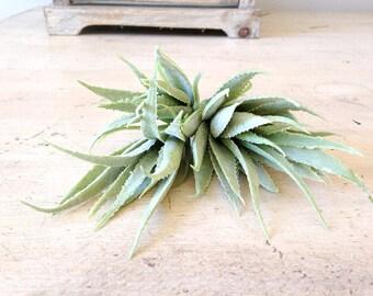 Artificial succulents, aloe, floral supplies, DIY succulent, faux succulent, artificial plant, grey succulent, centerpiece, bouquet, arrange