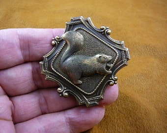 Squirrel walking I love squirrels lover on scrolled diamond shaped brass pin pendant BROOCH  repro Victorian  B-squir-54