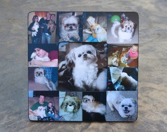 """Pet Memorial Collage Frame, Personalized Pet Memorial Picture Frame, Custom Cat Frame, Pet Collage Picture Frame 8"""" x 8"""", Unique Gift"""