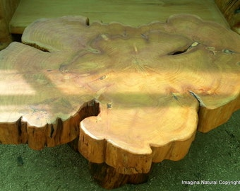 Charmant Large Naturally Unique Cypress Tree Trunk Handmade Coffee Table   Log  Rustic Chilean   Free International Shipping