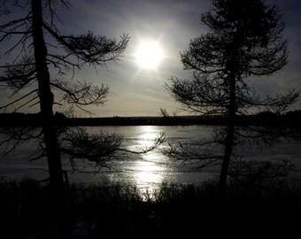 Winter Art, Frozen Lake Art, Winter Landscape Art, Tree Wall Art, Sun Art Prints, Winter Photography, Frozen Pond Art, Peaceful Art