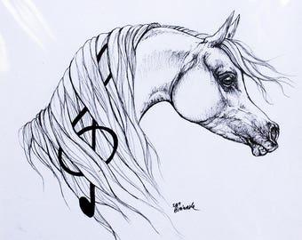 Arabian horse, equine art, equestrian, cheval, horse portrait, original pen drawing