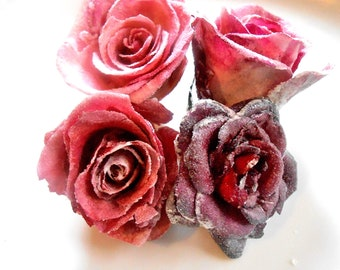 Candied Rose Collections
