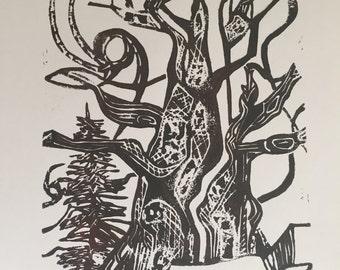 Bristlecone Pine - Brown