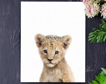 Lion print, Safari animal prints, PRINTABLE nursery art, Lion cub, Safari nursery decor, Baby lion, Safari animals, Nursery wall art
