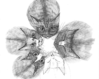 Kitten Star ORIGINAL artwork ink drawing on paper 8 x 8