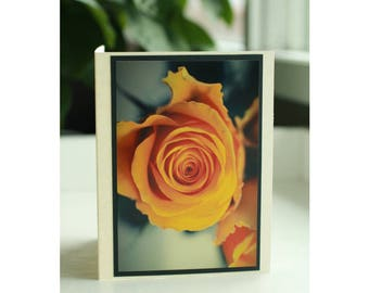 Yellow rose color pop photo notecard/floral stationery/any occasion greeting card/colour splash/nature photography/handmade cards for her
