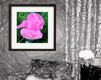 Perfect Pink Poppy Digital Download