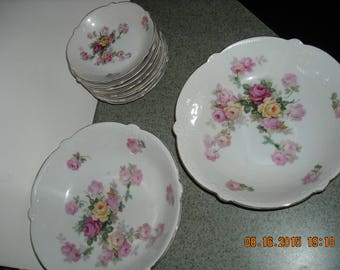 PORCELAIN SERVING BOWLS set of 10