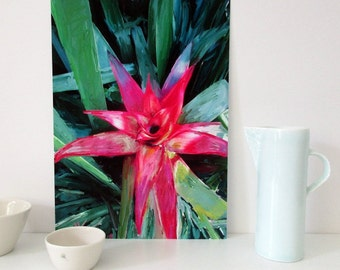 A2 Downloadable Art,  A3 Art Print, A4  Red Bromeliad Print, Printable Floral Wall Art, Instant Download, Botanical Wall Art, Gift for Mum