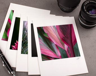 """Photo Note Card Set - 5""""x7"""" - Botanical Garden. Nature photography, pink flowers, tropical plants."""