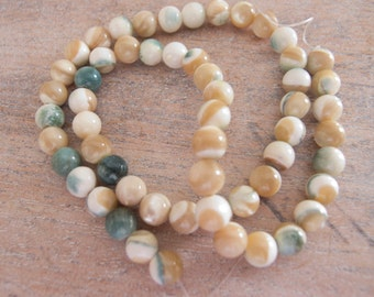 Rare Green Oyster Shell Round Organic Natural Beads  - 8mm - 8 inch Strand