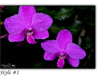 Orchid Black Framed Wall Art Photography