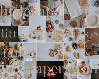 23 Autumn Stock Images For Bloggers, Photographers & Creatives