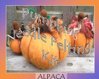 Pumpkin Felting Kit, Needle Felting Kit, Halloween Kit, Thanksgiving Decor, DIY Craft Kit, Beginner Felting Kit
