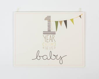 """baby's first year calendar - """"boy"""" coloring"""