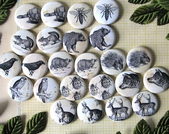 "Forest Friends - Woodland Creatures -  1"" Round Buttons or magnets (set of 6) - Vintage Engravings - Gift Under 10 Dollars - Antique Look"