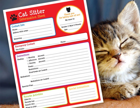 pet sitting invoice fresh pet sitting information sheet horse
