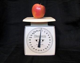 Hanson Kitchen Scale / Hanson Utility Scale / Vintage Scale