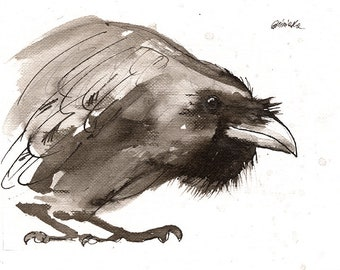 Raven, crow, original ink painting on paper, in wood frame
