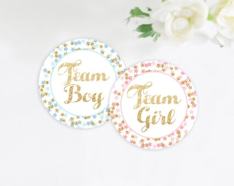 Twinkle Twinkle Little Star Gender Reveal Stickers, Team Girl and Team Boy Stickers, Gender Reveal Party