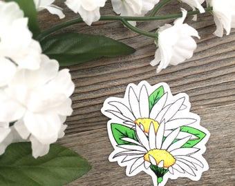 Wildflower Sticker – Daisy – Vinyl Sticker – Outdoor Durable – Dishwasher Safe – Colourful – Art